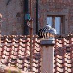 L'essentiel à savoir sur la ventilation de toiture