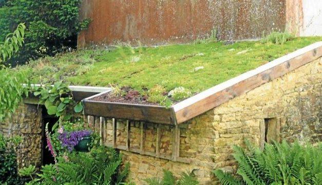 Qu'est ce qu'une toiture végétale ?